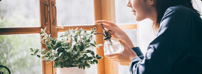 植物に水を与えている イメージ画像